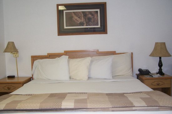 Big Iron Motel: The beautiful comfy bed..with plenty of pillows!