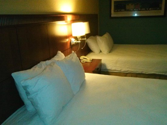 Courtyard Fort Lauderdale Airport & Cruise Port : beds