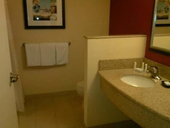 Courtyard Fort Lauderdale Airport & Cruise Port: bathroom
