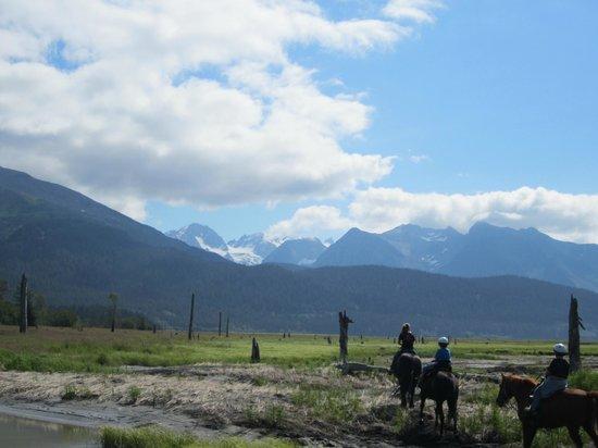 Bardy's Trail Rides - Day Tour: Horseback at Seward