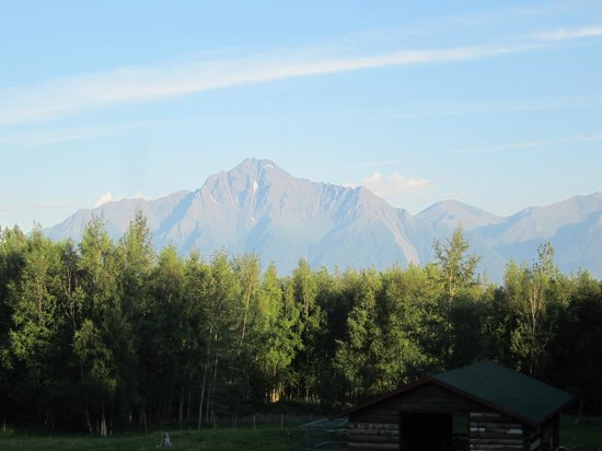 Alaska's Harvest B&B: Mountain view from the room