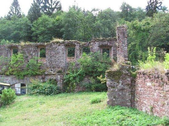 Former Monastery Grunau: ruins