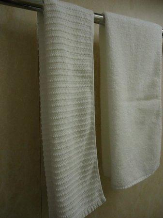 Daiwa Roynet Hotel Kanazawa : ボディ用タオルがあります。