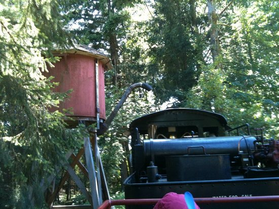 B.C. Forest Discovery Centre: The steam train stops for more water.