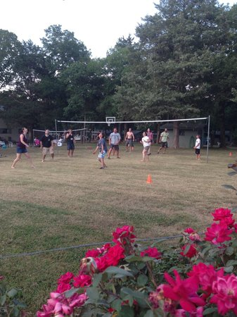 Green Valley Resort: Volleyball games were a fun part of our family reunion!