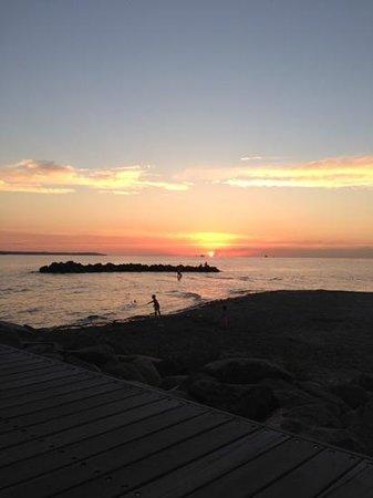 Sillen & Makrillen: solen går ner