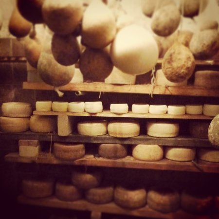 Experience Puglia : Local cheese