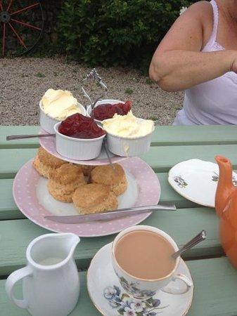 Green Pig Farm Tea Rooms: tea for two