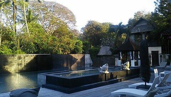 Villa Puri Ayu: プール