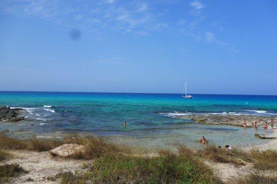 Hotel Rosamar : Playa a 50mt dall'hotel