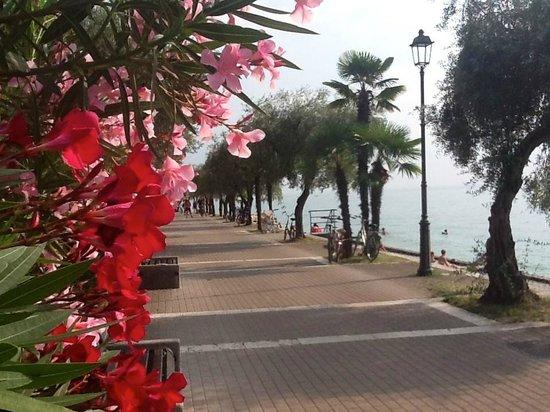 Hotel La Perla: Walk along the promenade to Bardolino.