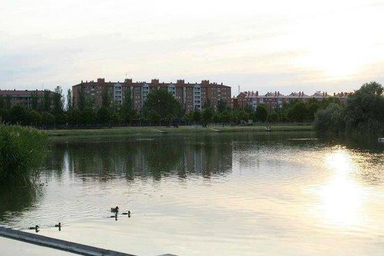 Duero Hotel : Alrededores del Hotel (Laguna de Duero)