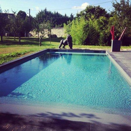 Les Suites du Chateau : La superbe piscine