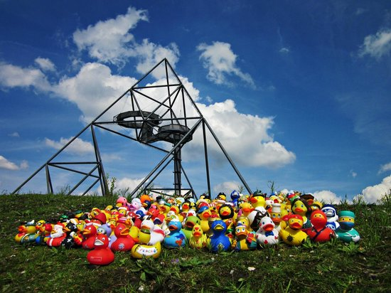 Tetraeder Bottrop : Zu Besuch mit meinen Enten...;-)