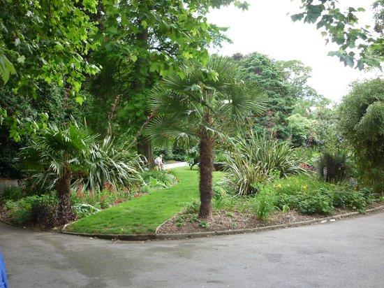 Park View Townhouse: Parc en face de l'hôtel