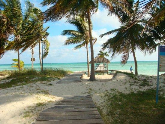 Gran Caribe Club Villa Cojimar: Playa