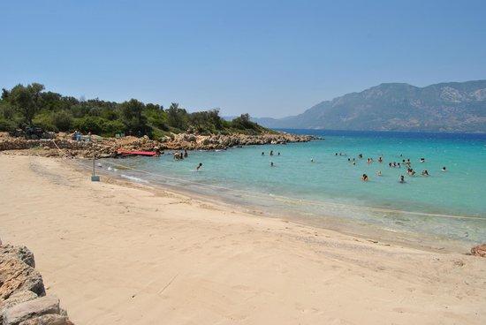 Cleopatra Island: Beach