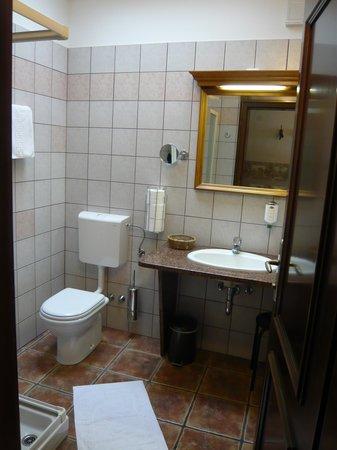 Hotel Grahor : bathroom