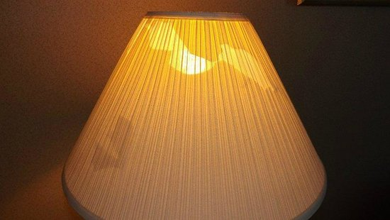 Holiday Inn Express & Suites Circleville: The torn lampshade
