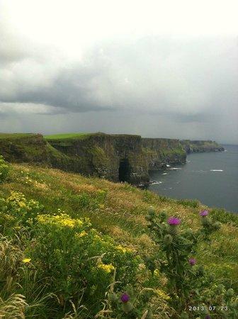 Cliffs of Moher : Verde Irlanda e vista della magnifica scogliera di Mhoer