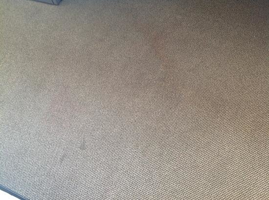 Residence & Conference Centre - Ottawa West: Carpet - full of stains
