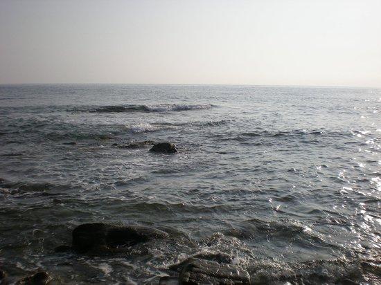 Hotel Bacco: Il mare della Costa del Cilento (scorcio)