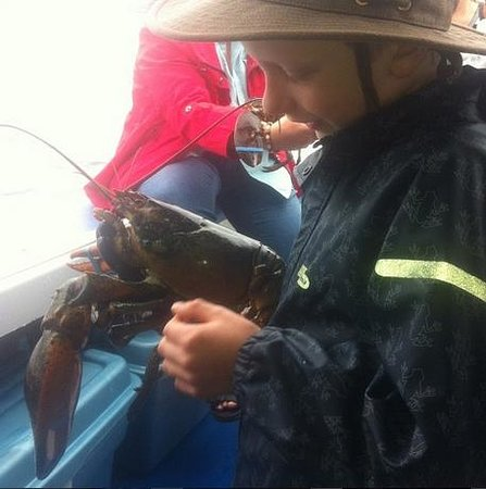 Paradise On The Sea Adventures: Lobster demo