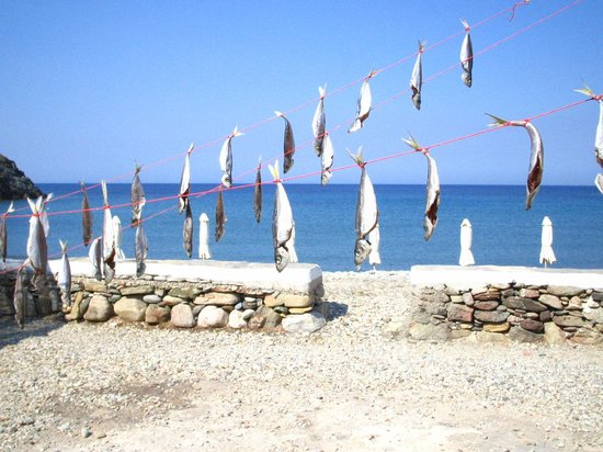 Simeon Rooms & Apartments: north west beach:taverna fishes