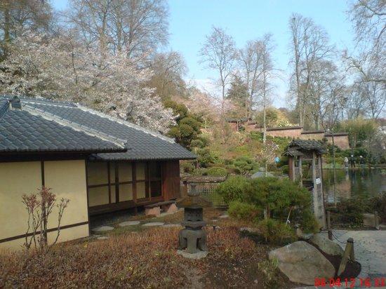 japan teehaus bild von japanischer garten japanese garden kaiserslautern tripadvisor. Black Bedroom Furniture Sets. Home Design Ideas