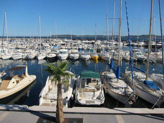 Hotel Les Palmiers Jachthaven St Maxime