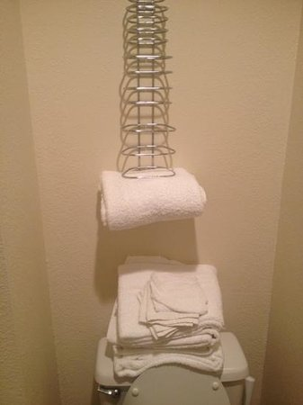 Mt. Olympus Resort: ummm... what's the towel rack for?