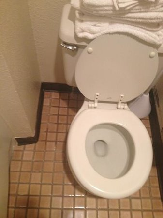 Mt. Olympus Resort: And, the constantly leaking toilet.