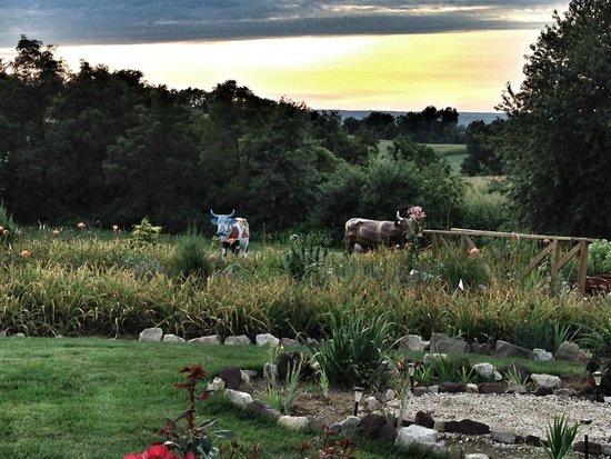 Annville Inn: The colorful cows