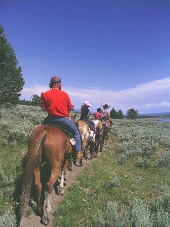 Yellowstone Horses - Eagle Ridge Ranch: Such a pleasant ride, with beautiful scenery