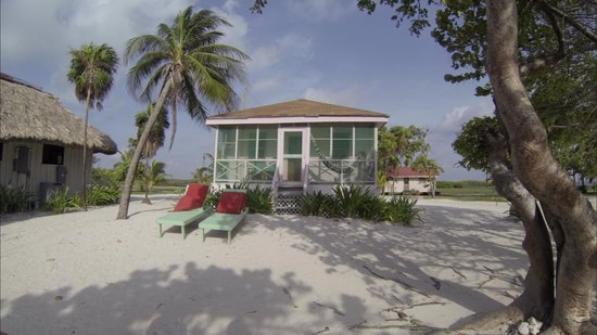 Blackbird Caye Resort: our cabana