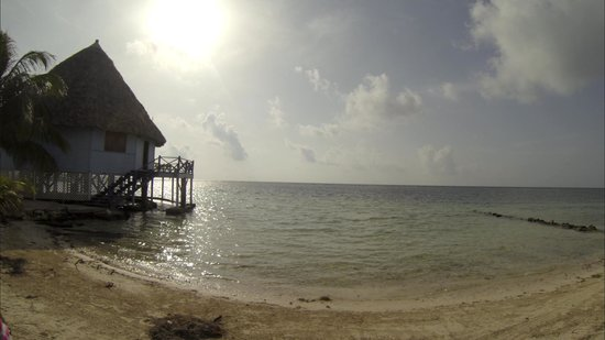 Blackbird Caye Resort: the view of the bar