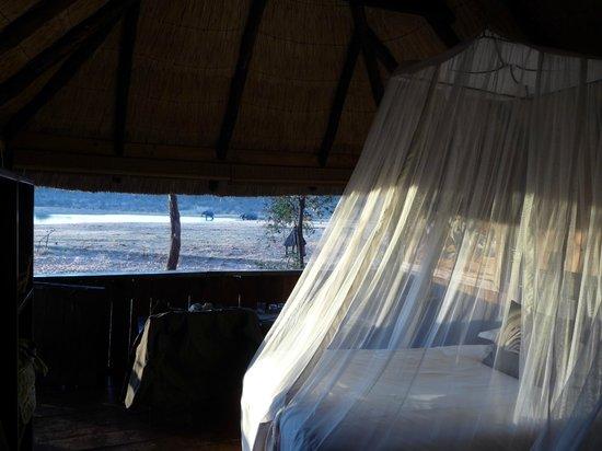 Ivory Lodge: la camera