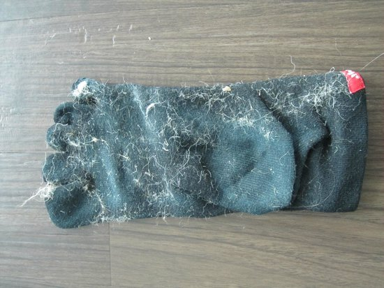 Hotel Indigo Asheville Downtown: One really dirty sock from dust on the floor