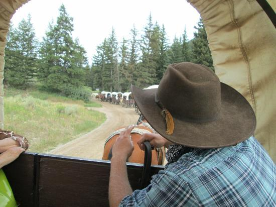 Bar J Chuckwagon Supper & Western Music Show: Informative driver talked to us along the trail.