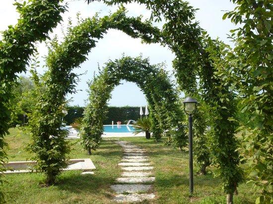 Agriturismo Tenuta Regina: vue sur la piscine