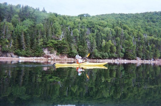 North River Kayak: Perfect Conditions!