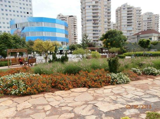 เดอะ มาร์มาร่า แอนทาลย่า โฮเต็ล: gardens