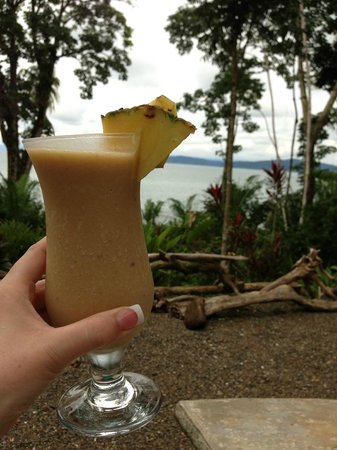 Copa de Arbol Beach and Rainforest Resort: Pina Colada before dinner
