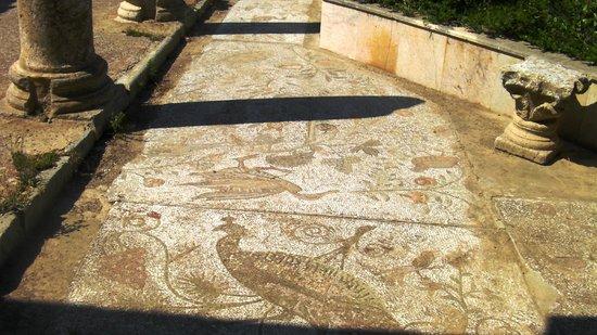 Villas Romaines