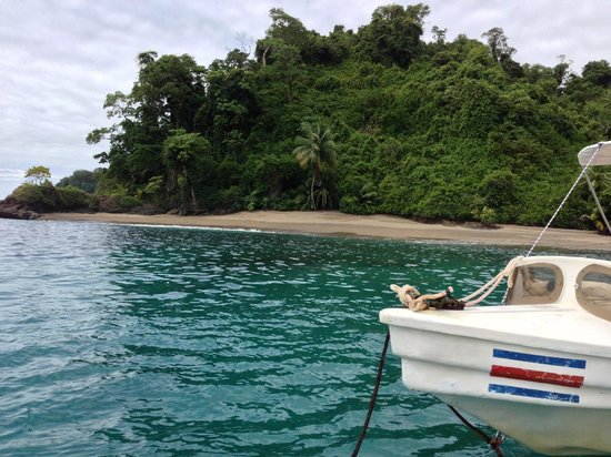 Copa de Arbol Beach and Rainforest Resort: Snorkeling area at Isla del Cano