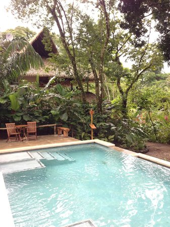 Copa de Arbol Beach and Rainforest Resort: View of the main lodge from the pool
