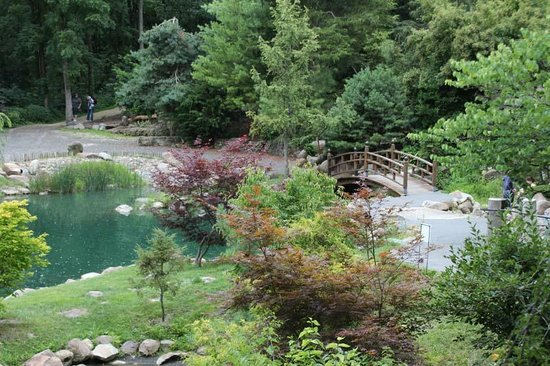 Dubuque Arboretum and Botanical Gardens: View of Japanese Garden