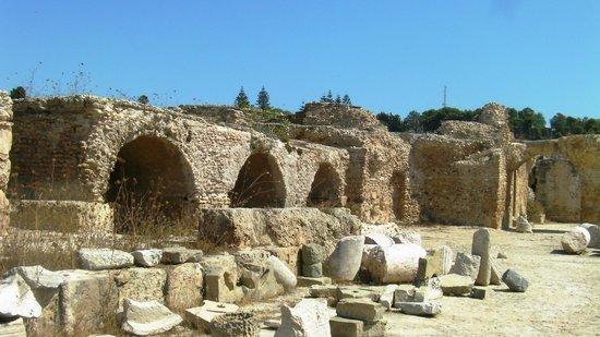 Antichi bagni romani - Picture of Ancient Roman Baths, Carthage - TripAdvisor