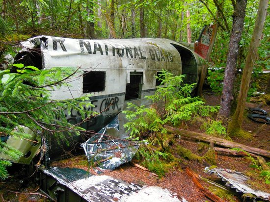 Wild Alaska Inn at Glacier Bay: Hike to the airplane crash site few minutes from the B&B