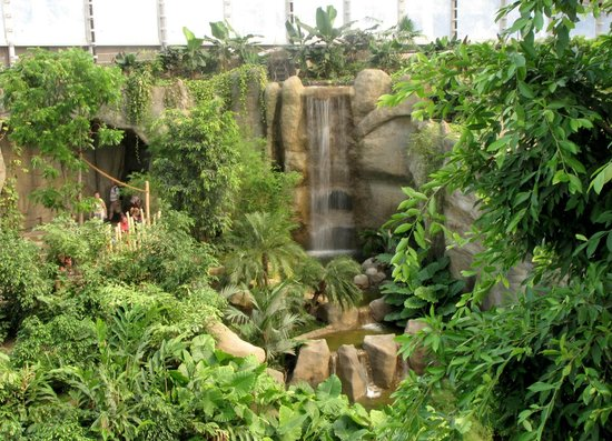 tropenhalle mit wasserfall picture of leipzig zoo. Black Bedroom Furniture Sets. Home Design Ideas